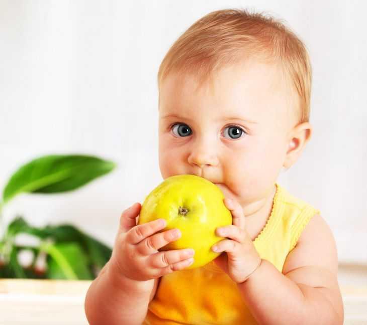 Лучшее детское питание - рейтинг ведущих производителей смесей и пюре для детей разных возрастов (145 фото)