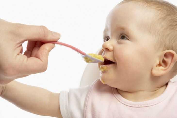 Меню ребенка в 9 месяцев: подбор лучших продуктов и рацион питания. Чем советуют кормить малыша и особенности выбора питания (80 фото)