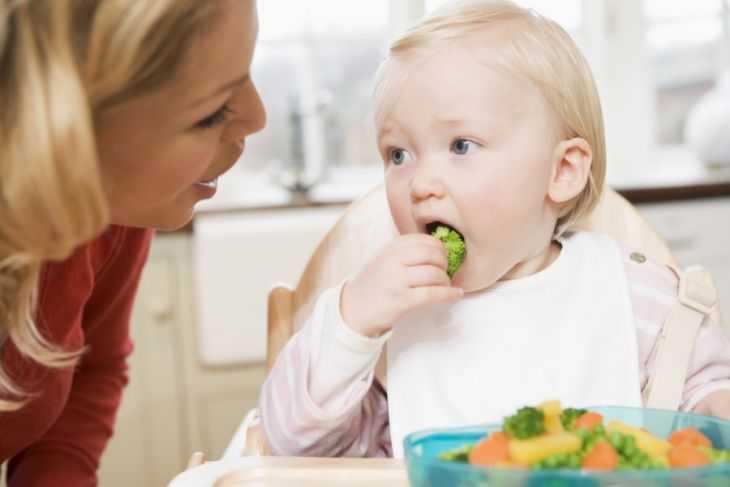 Правила рационального питания детей: основные принципы питания и советы по выбору блюд и рецептов (135 фото)