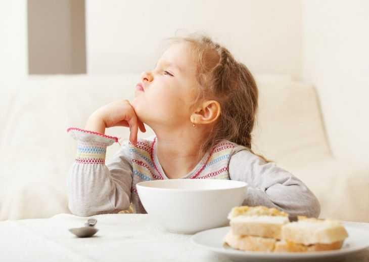 Правильное питание ребенка - основные методы и нюансы выбора рациона питания. Правила приготовления еды для детей (110 фото и видео)