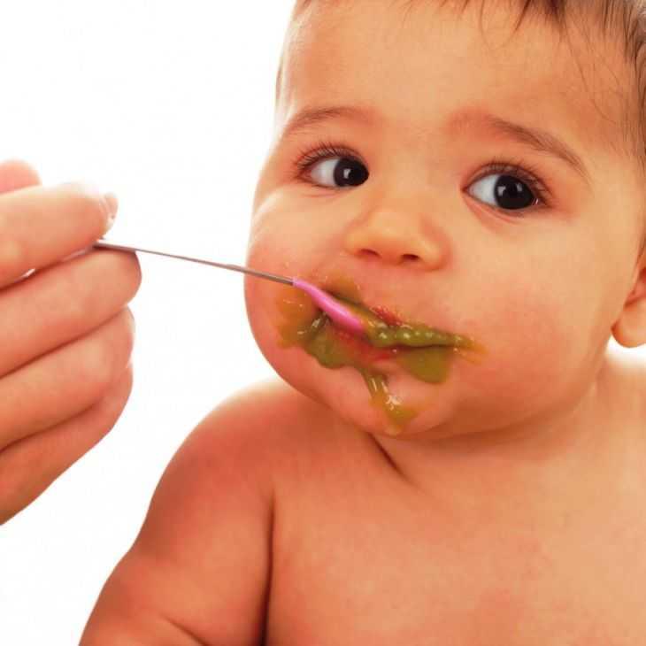Время первого прикорма детей: признаки готовности, схемы введения и грамотный график прикорма для малышей до года (120 фото)