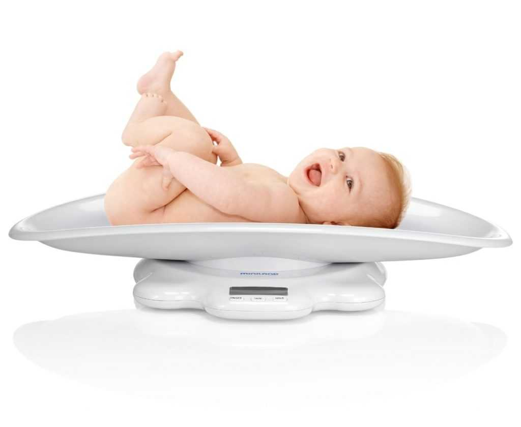 Вес картинки для детей